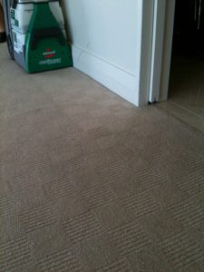 Professional Carpet Cleaning Auckland